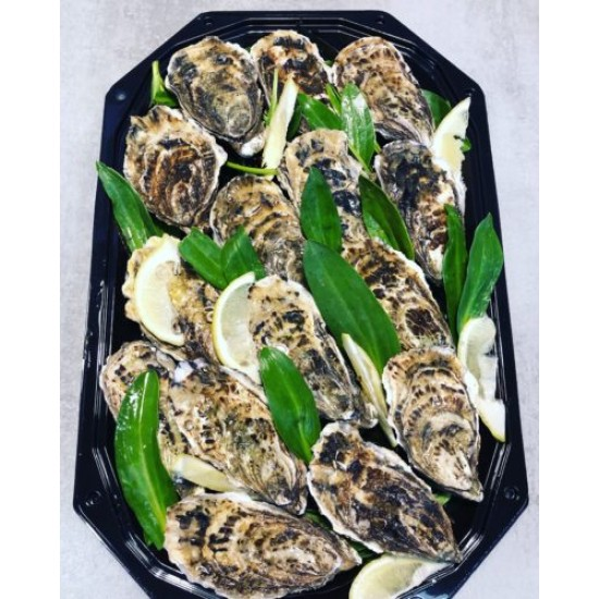 Oesters Creuse